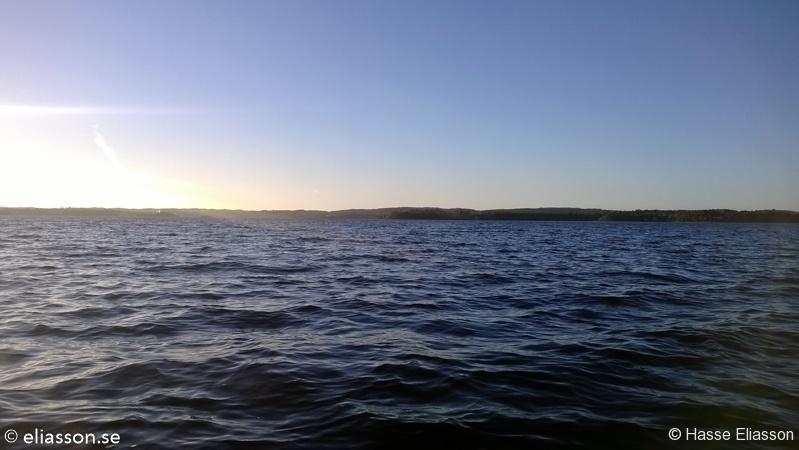 fiske2013-10