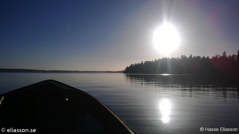 fiske2013-2