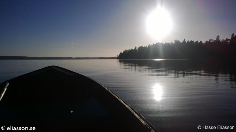 fiske2013-3