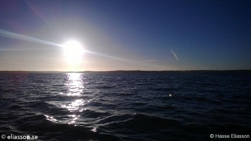 fiske2013-7