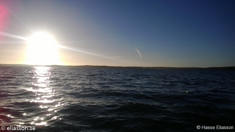 fiske2013-9