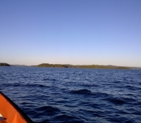 fiske2013-12