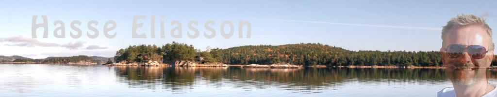 Hasse Eliasson